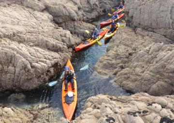 Explore Jersey by Kayak - Jersey Kayak Adventures